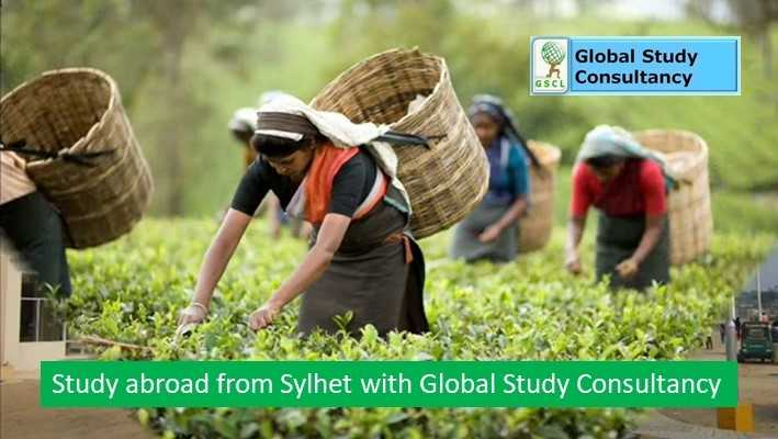 best way to study abroad from Sylhet